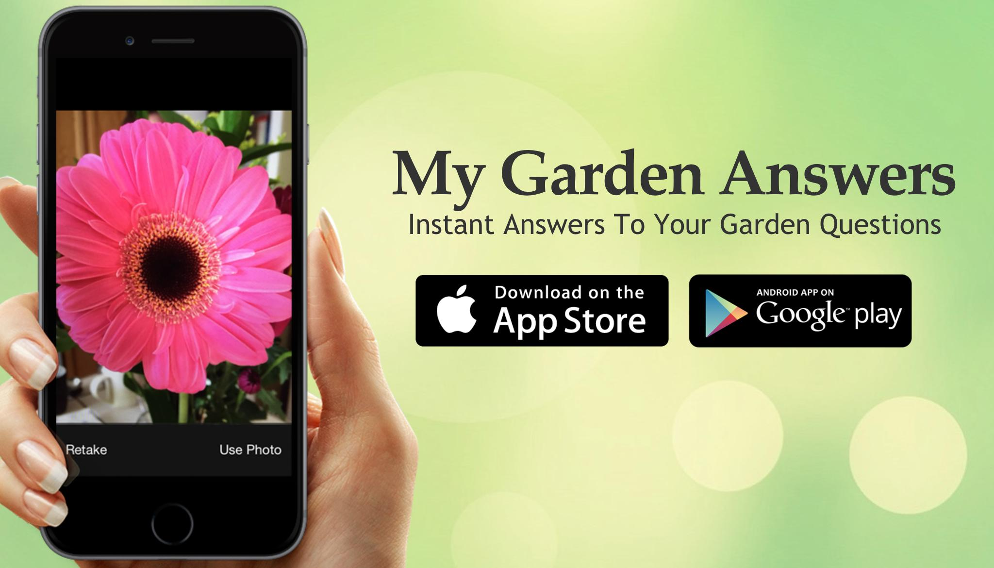 garden answers plant identification - Garden Answers